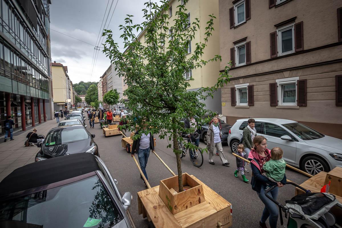 Am 06.06.2019 fand der Umzug der Stuttgarter Wanderbaumallee von der Augustenstrasse in die Forststrasse statt.